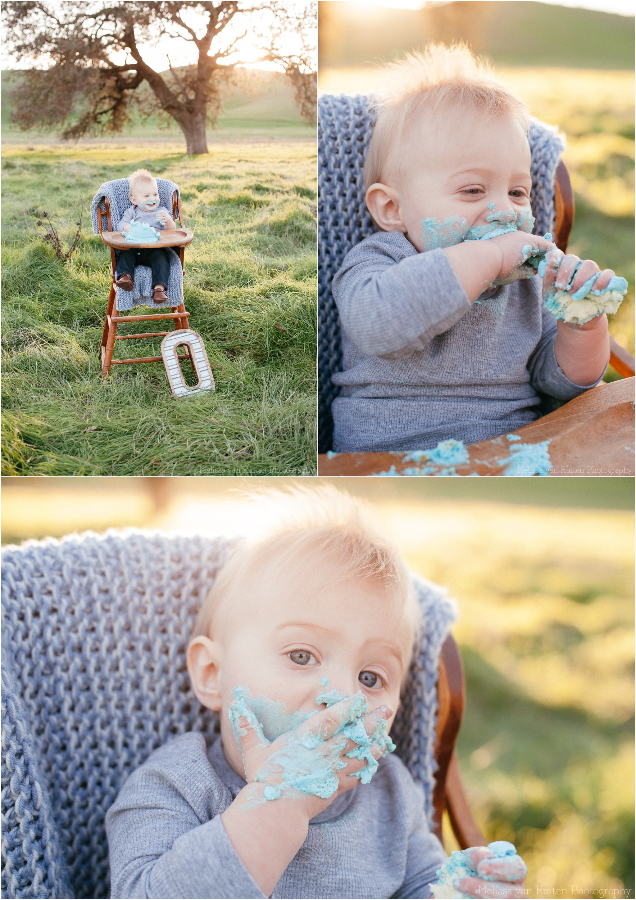 brentwood california san francisco bay area 1st birthday cake smash photography